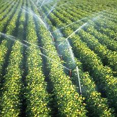 Senet and Paige Ag Partner to Deliver Smart Irrigation Solutions
