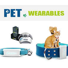 Pet Wearables: The Next Billion Dollar Market