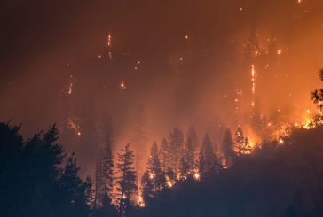 Kerlink and NetOP Technology Partner on IoT-Based Wildfire Prevention System