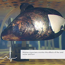 Marine organismes monitor the effect of the total water ambient