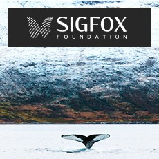 Small Messages, Big Causes: The SIGFOX Foundation