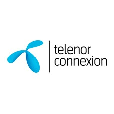 Telenor Connexion introduces security solution optimized for connected services