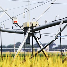 irrigation control & monitoring