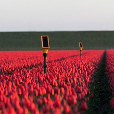 Dacom smart agriculture solution