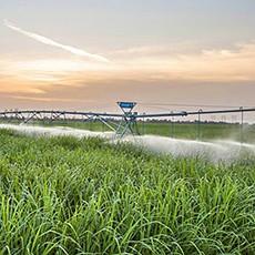 U.S. Sugar and AgriSource Data Leverage Ingenu's Machine Network to Deliver Innovative Smart Agriculture Solution
