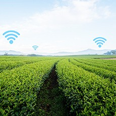 Semtech's LoRa Technology Enables Smart Soil Sensors