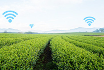 Semtech's LoRa Technology Enables Smart Soil Sensors