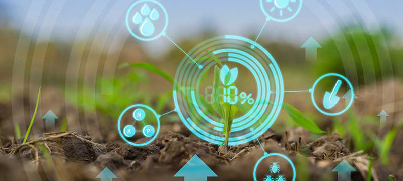 Nokia and Vi CSR deploy SmartAgri solution to enhance farming practices of 50,000 farmers in India